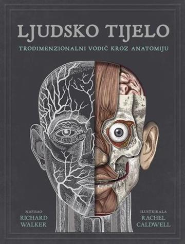 Ljudsko-tijelo